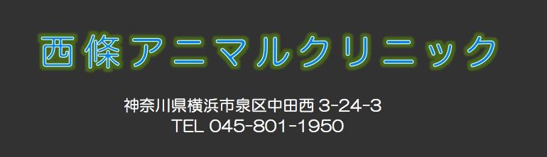 西條アニマルクリニック|横浜市泉区|動物病院|犬/猫/ウサギ/ハムスター/小鳥他の診療